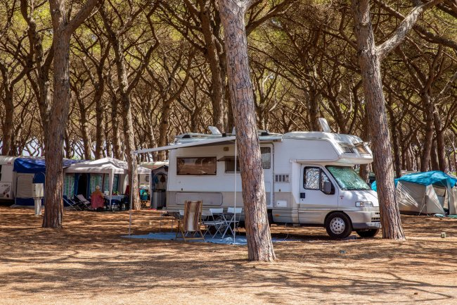 California Camping Village (VT) Lazio
